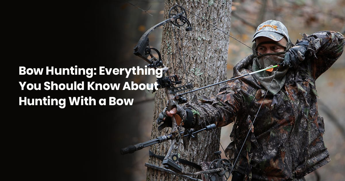 Bow Hunting: Everything You Should Know About Hunting