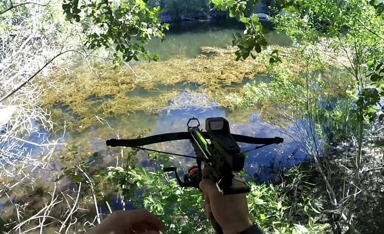 Fishing With Crossbow Pistol